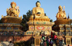 Buddhist Tour with Nepal