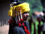 India Tribal Tours