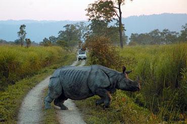 assam adventure tour