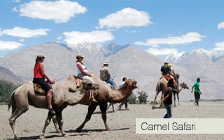 Ladakh Great Deal Package