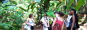 goa day tour