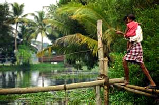 village life in kerala tour