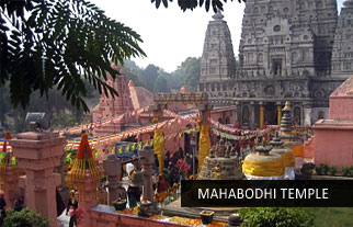India Buddhist tour