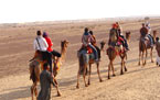 Incredible Rajasthan Tour Packages