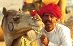 golden traingle tour of india
