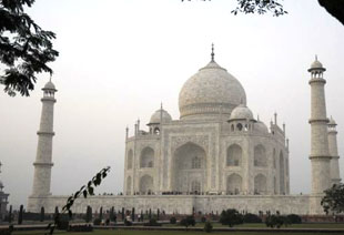 Amazing Golden Triangle Trip
